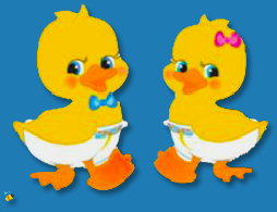 IF CLICK IT GOES TO DUCKIES WEB SITE.